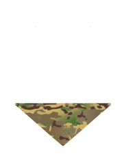 logo_footer2x