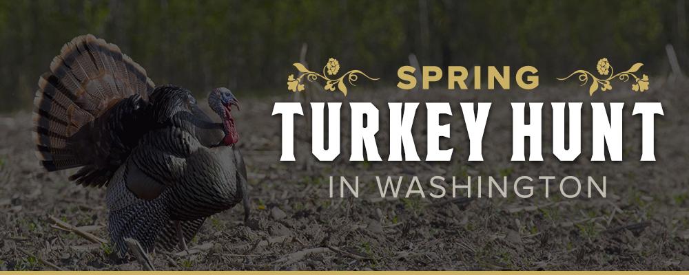Spring Turkey Hunt
